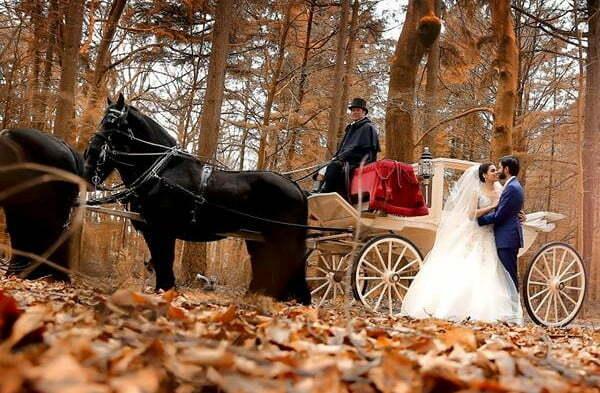 Bridal Doli Bridal Doli